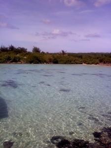 アムの綺麗な海(アプラ湾近郊)3