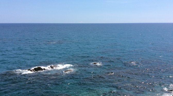 【桂浜】太平洋に臨む海岸!~かつらはま~